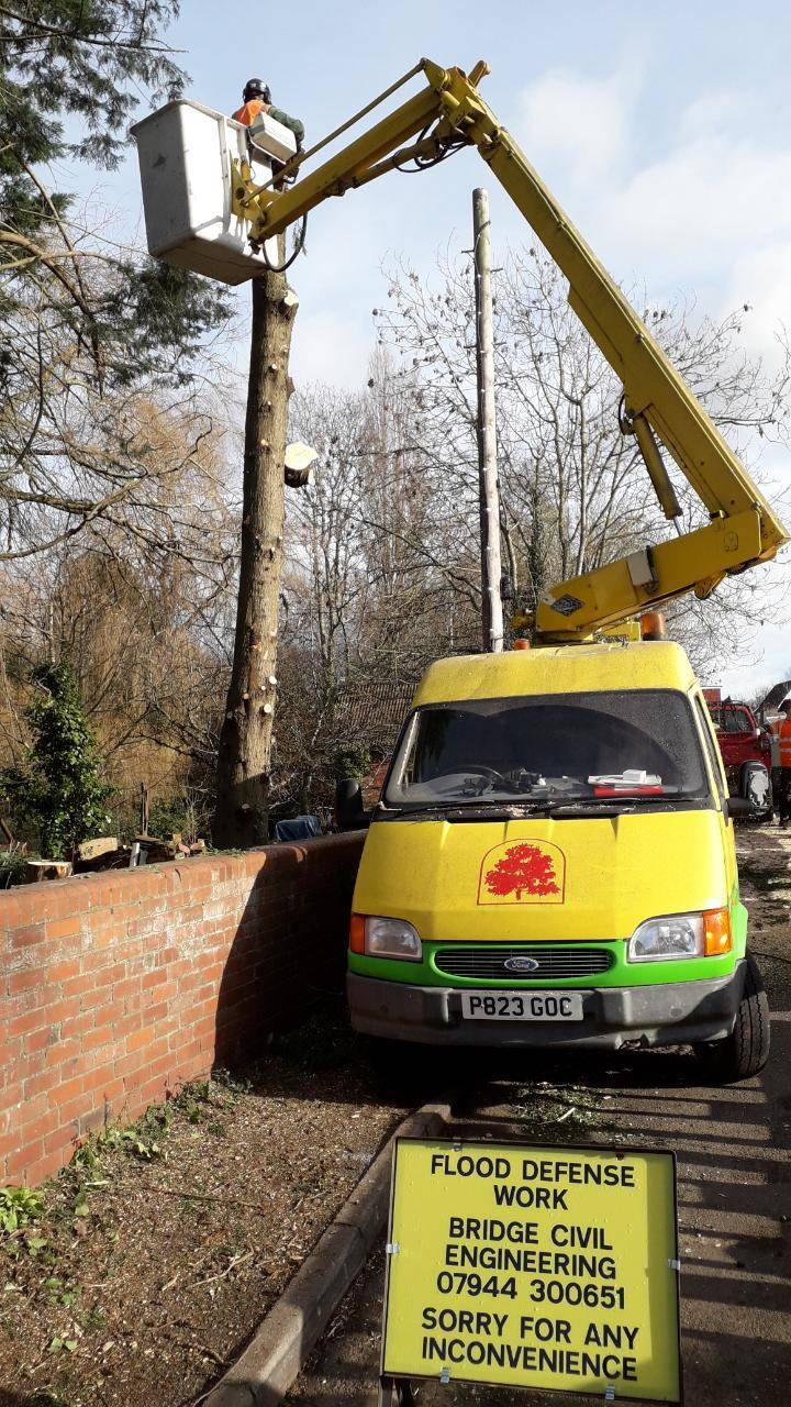 tree surgery van with lift
