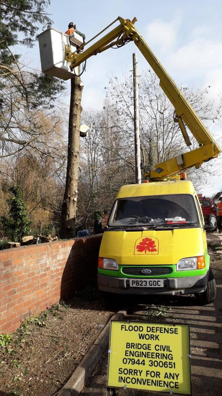 tree surgery van with lift